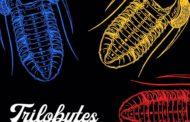 TRILOBYTES presentan su primer videoclip «De Verdad»